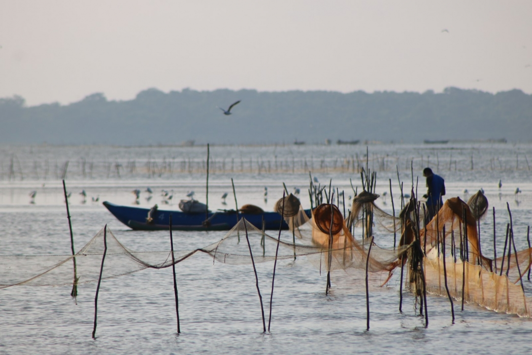 Still no action on illegal fishing by Sinhalese in Mullaitivu