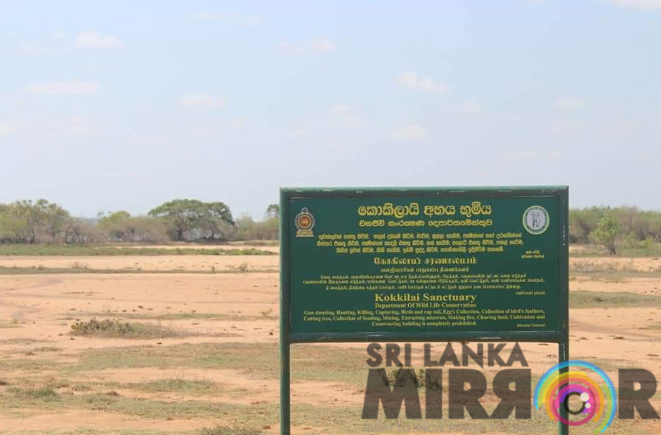 Allegations that government is stealing Tamil homeland to establish Sinhala settlements